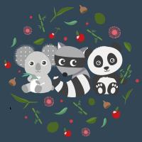 Koala, Mapache, Panda