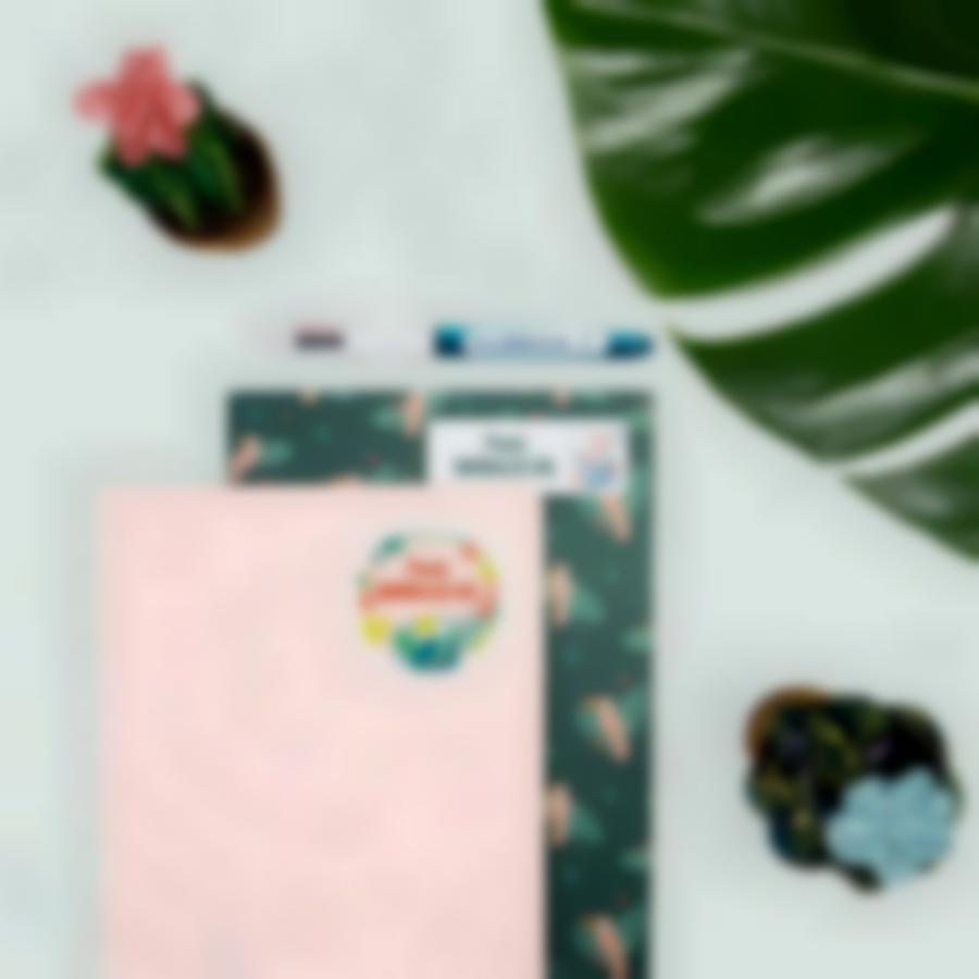 5 pack etiquetas pegatinas basico tropical