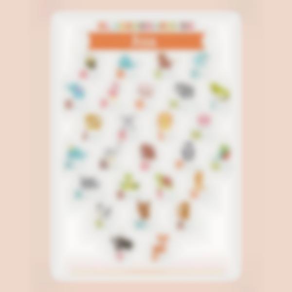 poster educativo personalizado ludimagic el abecedario animales 02 es 1