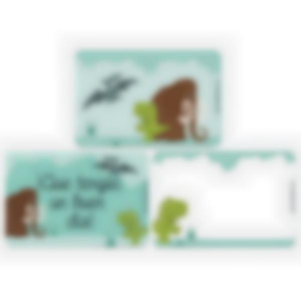 Lote adicional de 3 tarjetas magnéticas para la fiambrera Ludibox–Dinosaurio