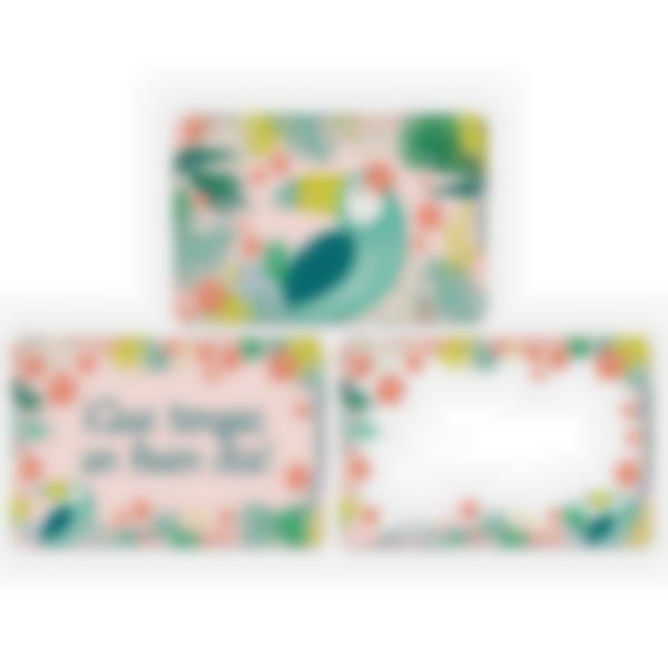 Lote adicional de 3 tarjetas magnéticas para la fiambrera Ludibox–Tropical