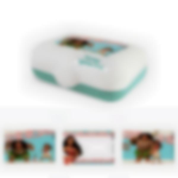 Ludibox - Fiambrera personalizada verde – Disney Vaiana