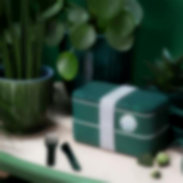 Bento para adultos MB Original Made in France - Monbento