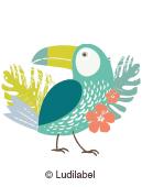 ilustración tropical por las etiquetas nominativas